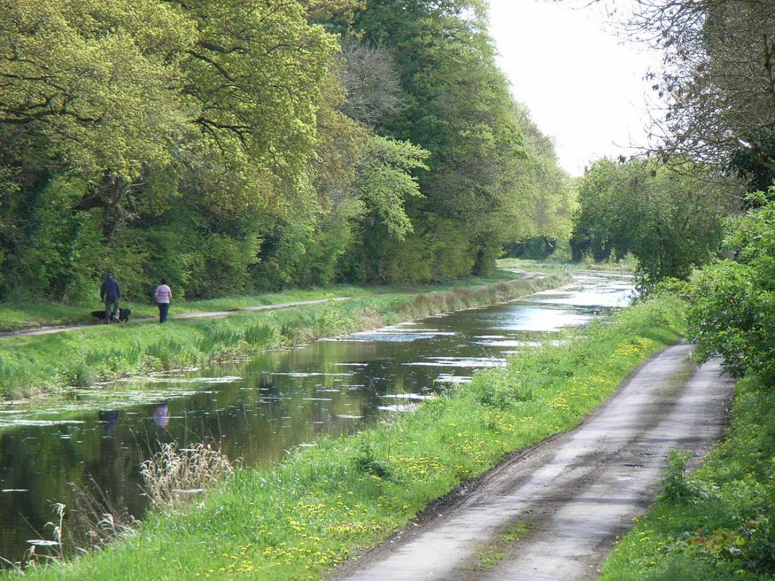 1200px-Royal_Canal_Westmeath