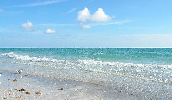 lbk-club-beach